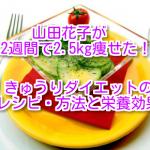 きゅうりダイエットのレシピ・方法と栄養効果。山田花子が2週間で2.5kg痩せた!?